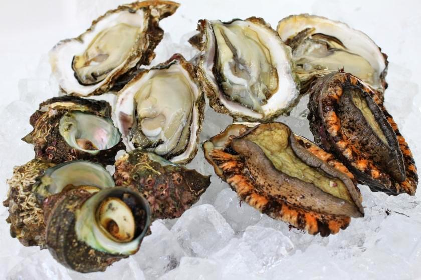 天然魚介(牡蠣、あわび、甘えび他)のイメージ