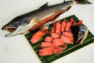 塩引鮭のイメージ