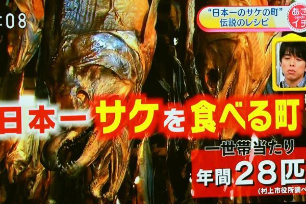 日本一鮭を食べるまち