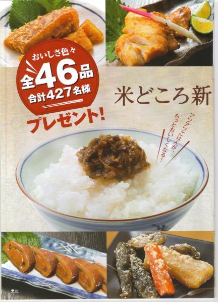 l_nippou201005